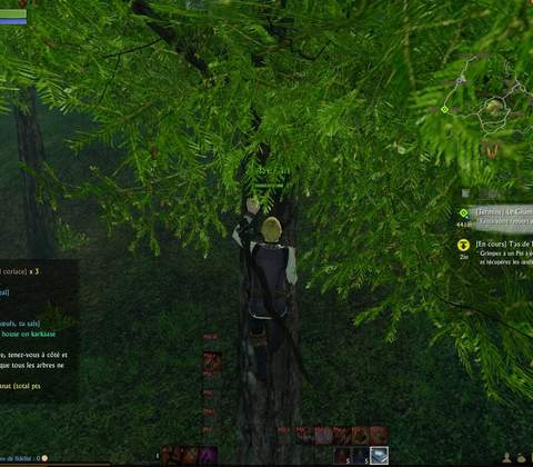 ArcheAge in-game screenshot 6