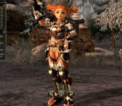 Lineage II in-game screenshot 1